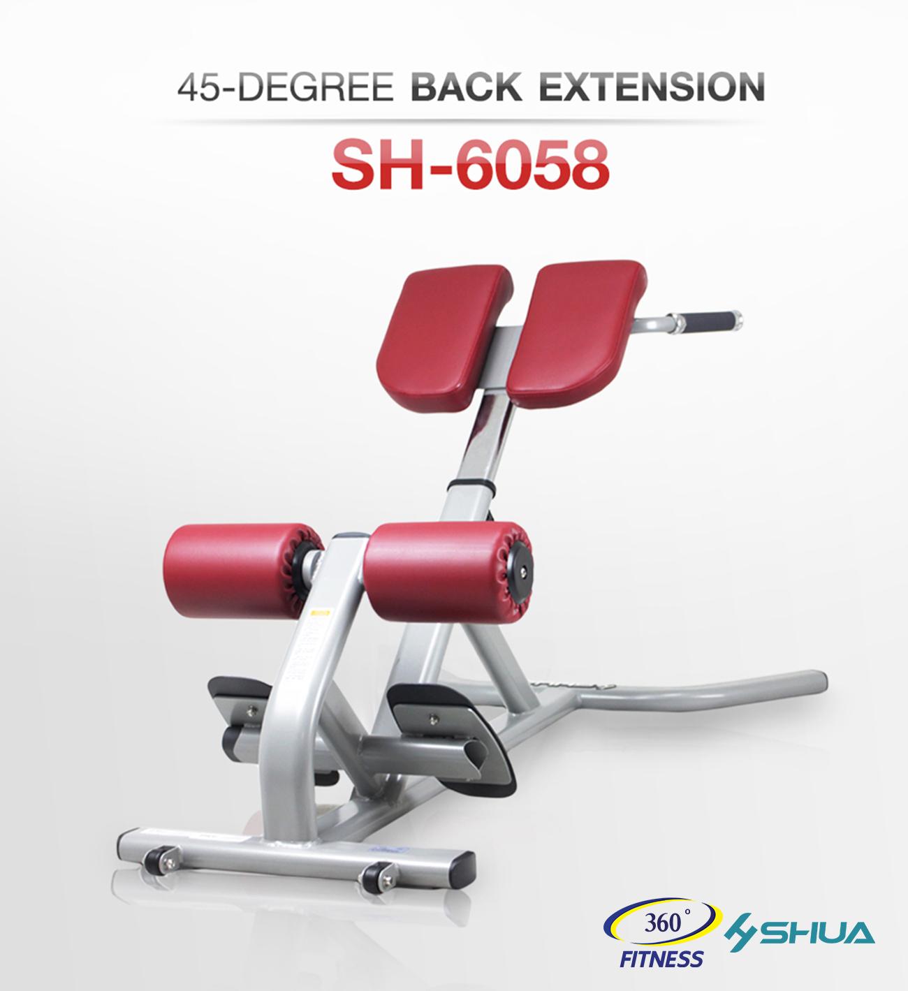 45-DEGREE BACK EXTENSION SH-6058
