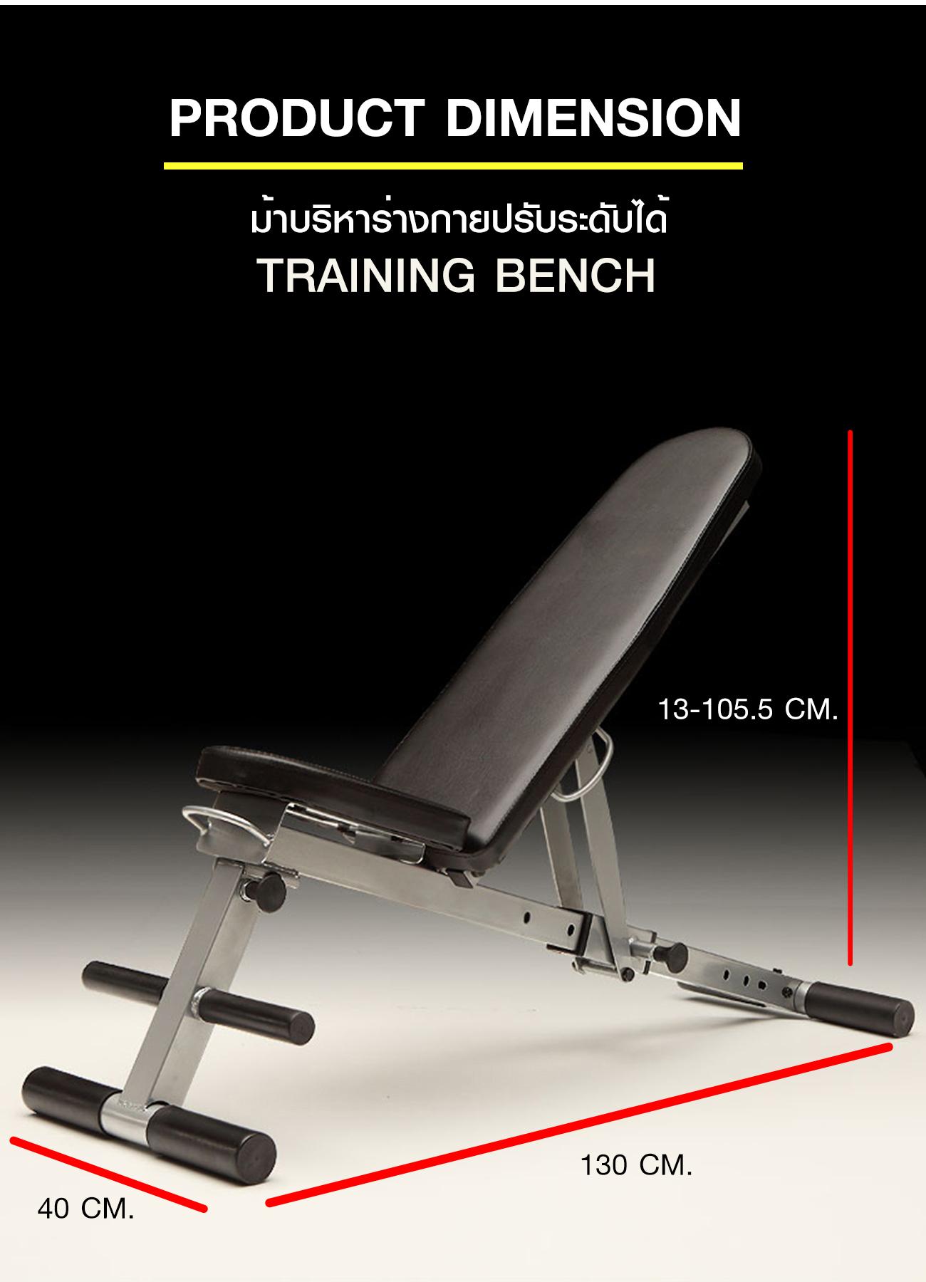 ม้าบริหารร่างกายปรับระดับ Training Bench