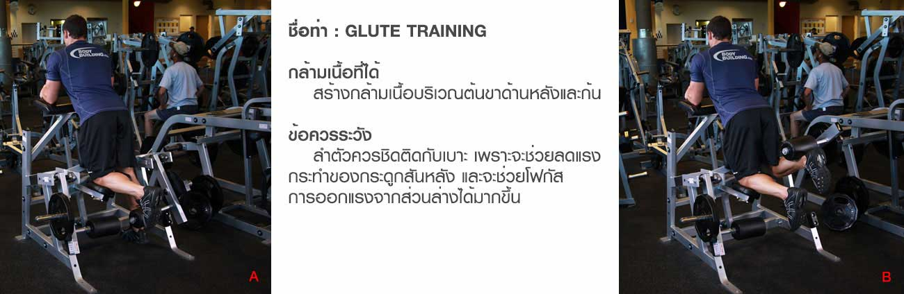 เครื่องบริหารกล้ามเนื้อบริเวณก้นและต้นขาด้านหลัง Glute Training (SH-G5818)