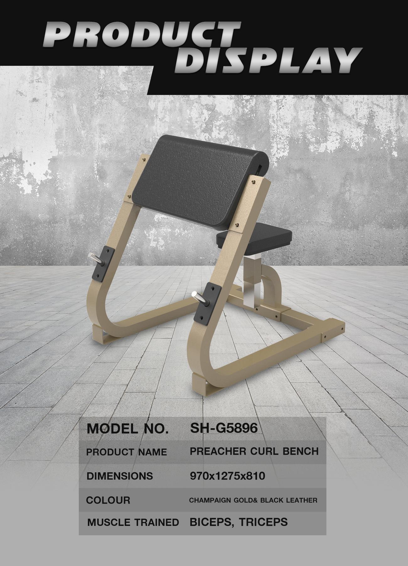 Preacher Curl Bench (SH-G5896)
