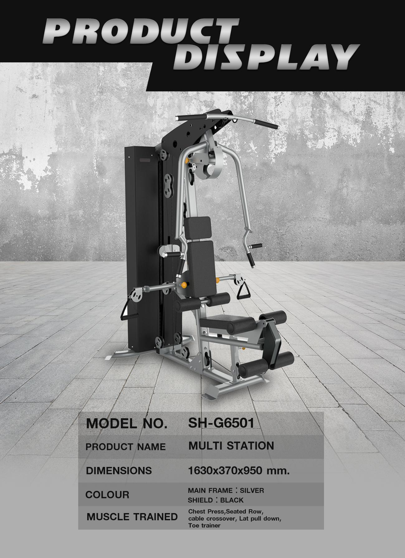 Multi station (SH-G6501)