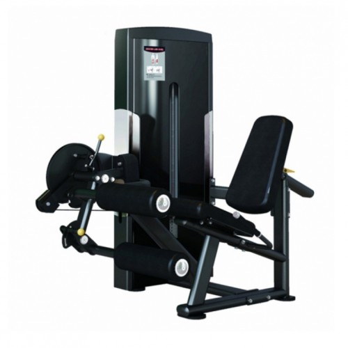 LEG CURL / EXTENSION (SA025)